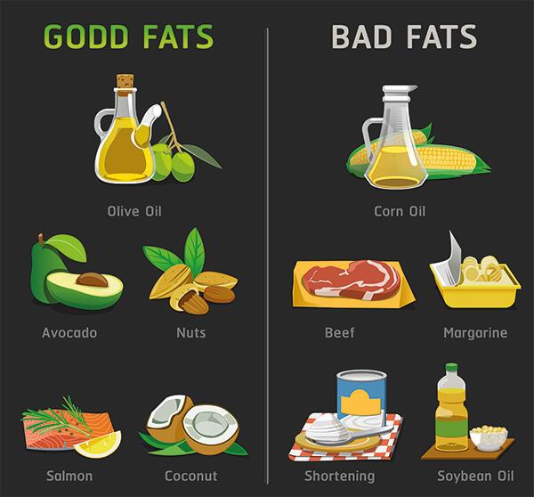 L'importance des graisses dans la nutrition